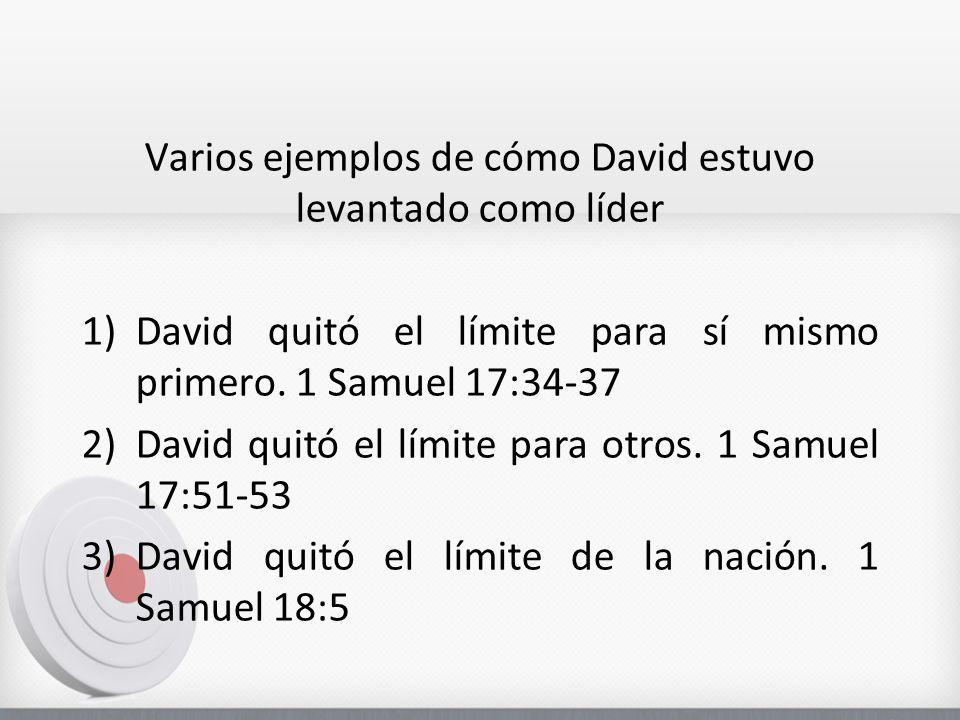Varios ejemplos de cómo David estuvo levantado como líder