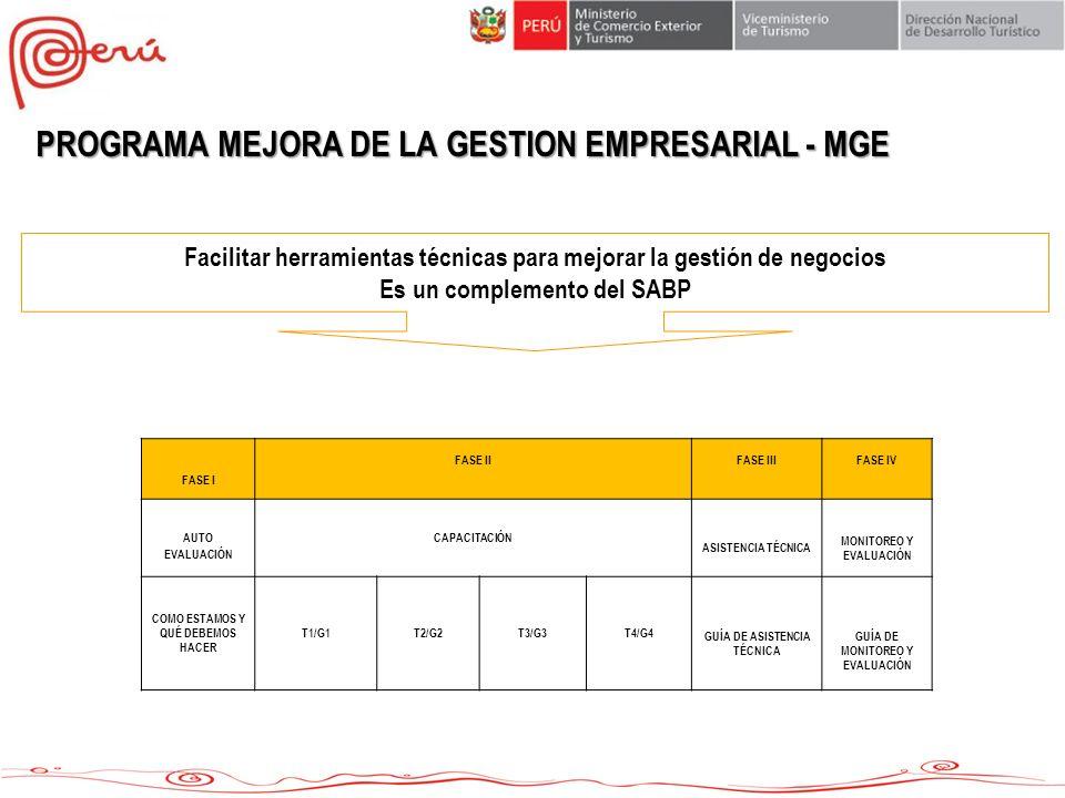PROGRAMA MEJORA DE LA GESTION EMPRESARIAL - MGE