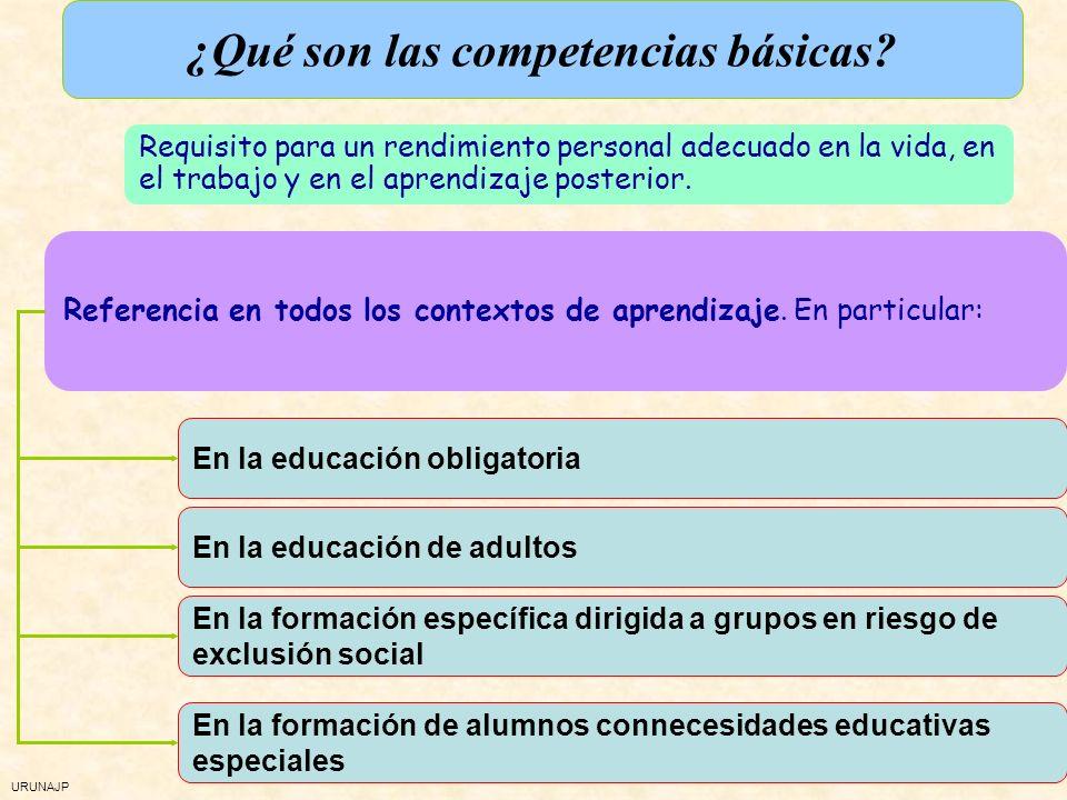 ¿Qué son las competencias básicas