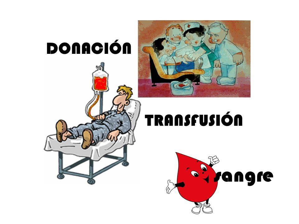 DONACIÓN TRANSFUSIÓN sangre