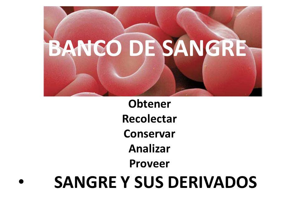 SANGRE Y SUS DERIVADOS BANCO DE SANGRE Obtener Recolectar Conservar
