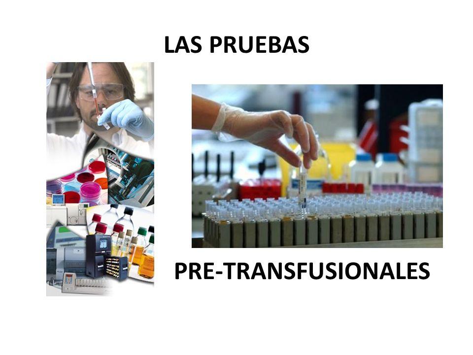 LAS PRUEBAS PRE-TRANSFUSIONALES
