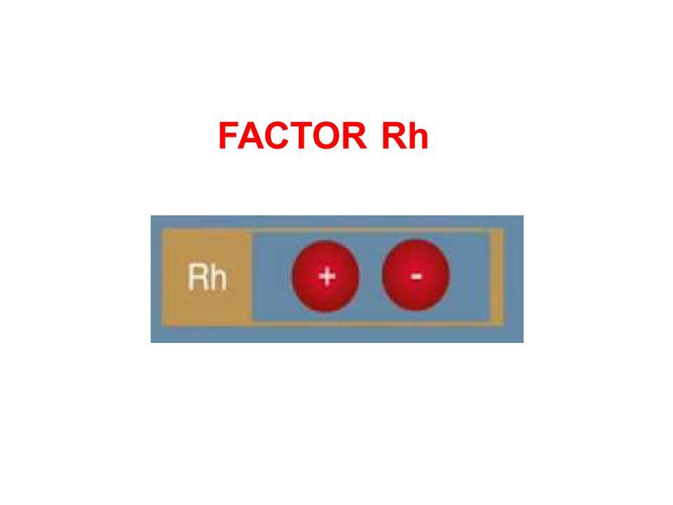 FACTOR Rh .