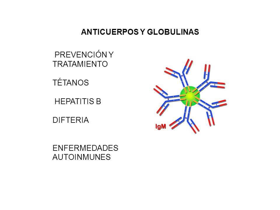 ANTICUERPOS Y GLOBULINAS