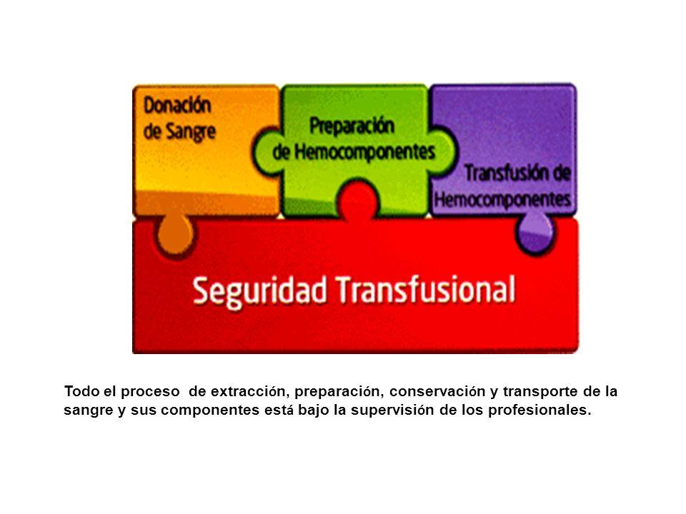 Todo el proceso de extracción, preparación, conservación y transporte de la sangre y sus componentes está bajo la supervisión de los profesionales.