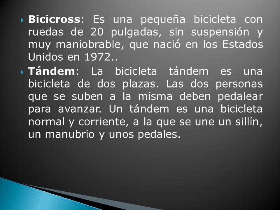 Bicicross: Es una pequeña bicicleta con ruedas de 20 pulgadas, sin suspensión y muy maniobrable, que nació en los Estados Unidos en 1972..