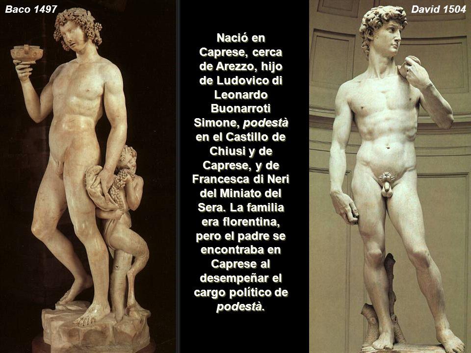 Baco 1497 David 1504.