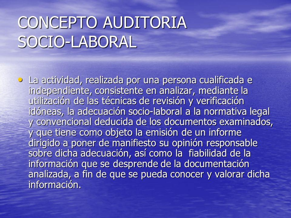 CONCEPTO AUDITORIA SOCIO-LABORAL
