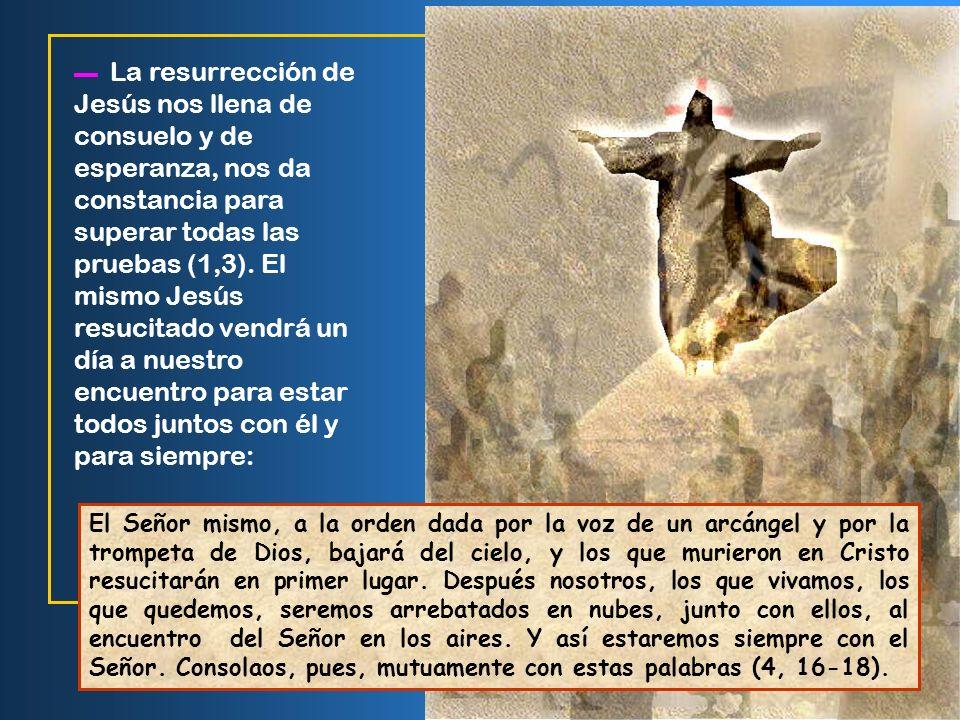 ▬ La resurrección de Jesús nos llena de consuelo y de esperanza, nos da constancia para superar todas las pruebas (1,3). El mismo Jesús resucitado vendrá un día a nuestro encuentro para estar todos juntos con él y para siempre: