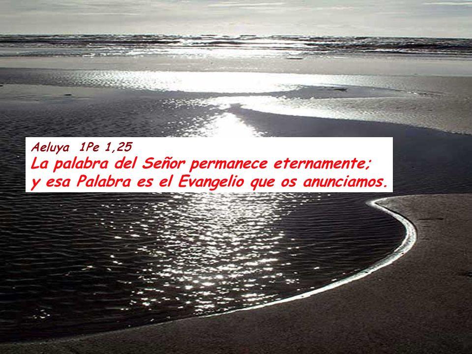 La palabra del Señor permanece eternamente;