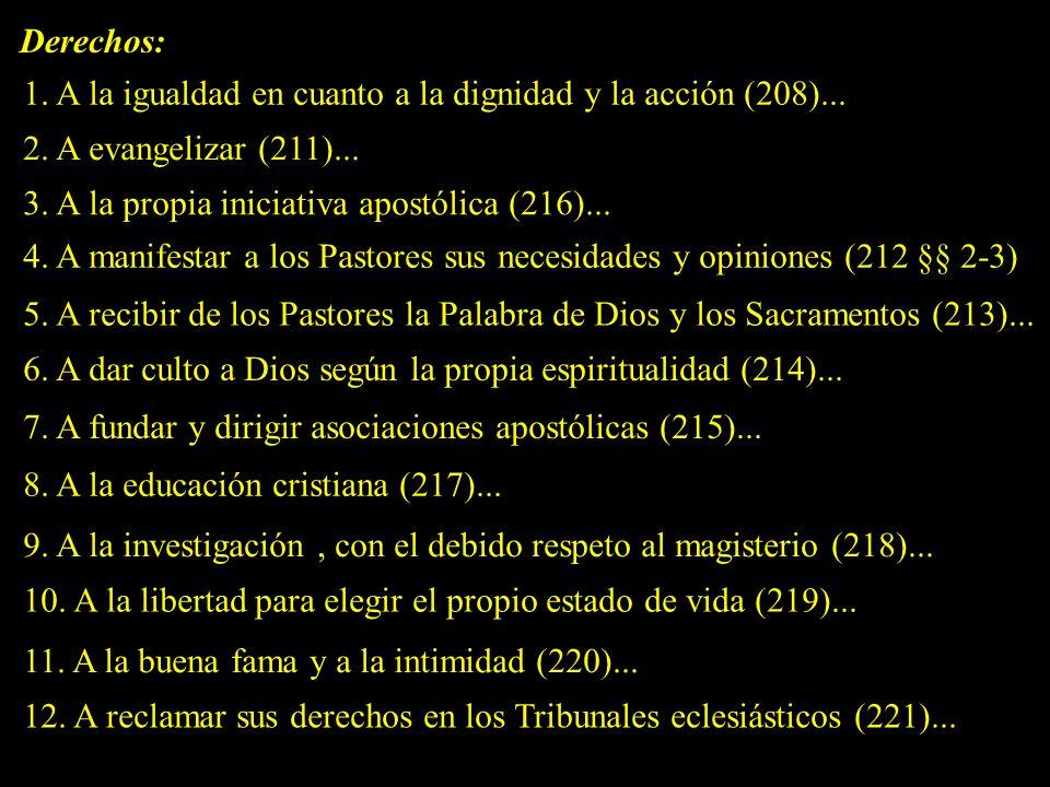 Derechos: 1. A la igualdad en cuanto a la dignidad y la acción (208)... 2. A evangelizar (211)... 3. A la propia iniciativa apostólica (216)...