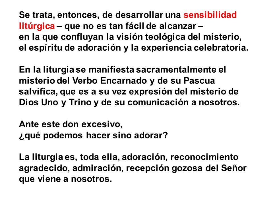 Se trata, entonces, de desarrollar una sensibilidad litúrgica – que no es tan fácil de alcanzar –