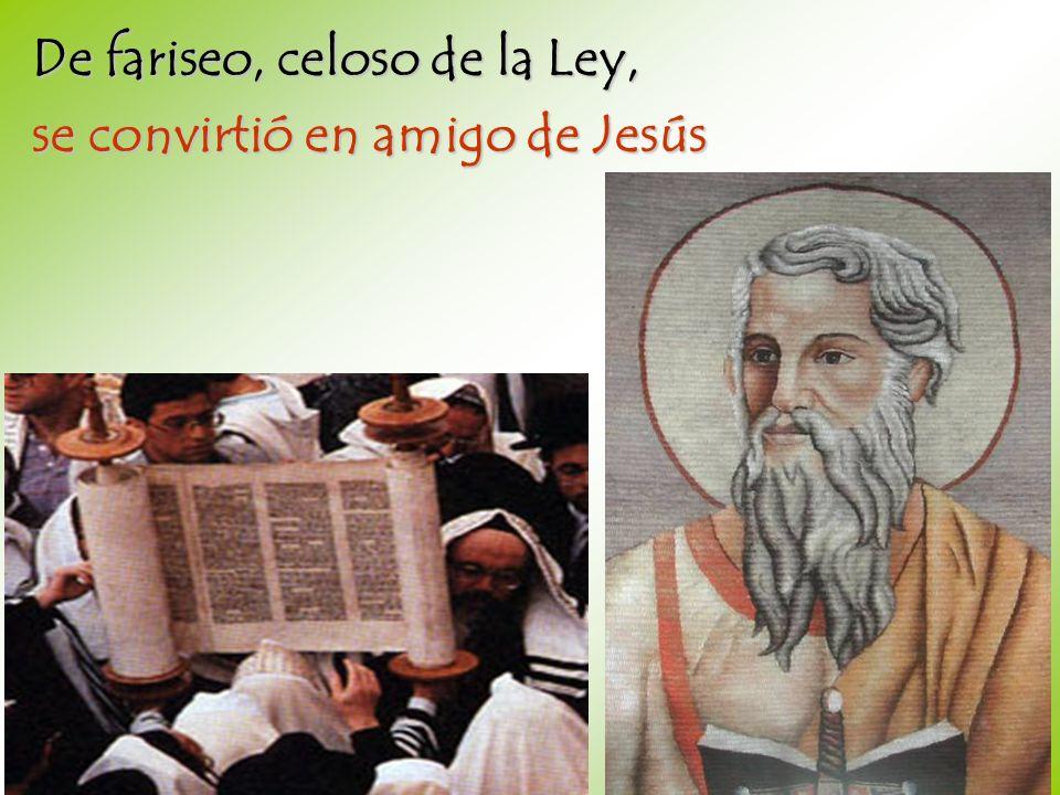 De fariseo, celoso de la Ley,