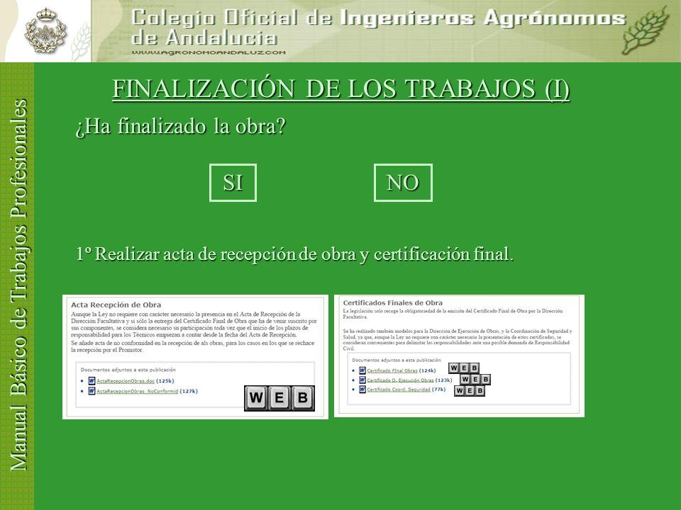 FINALIZACIÓN DE LOS TRABAJOS (I)