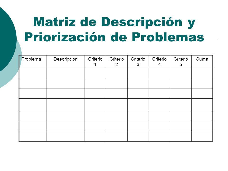 Matriz de Descripción y Priorización de Problemas