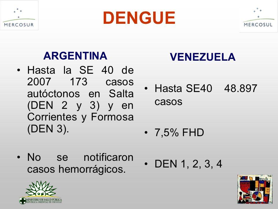 DENGUE ARGENTINA. Hasta la SE 40 de 2007 173 casos autóctonos en Salta (DEN 2 y 3) y en Corrientes y Formosa (DEN 3).