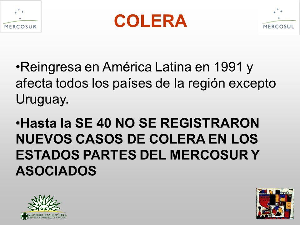 COLERAReingresa en América Latina en 1991 y afecta todos los países de la región excepto Uruguay.