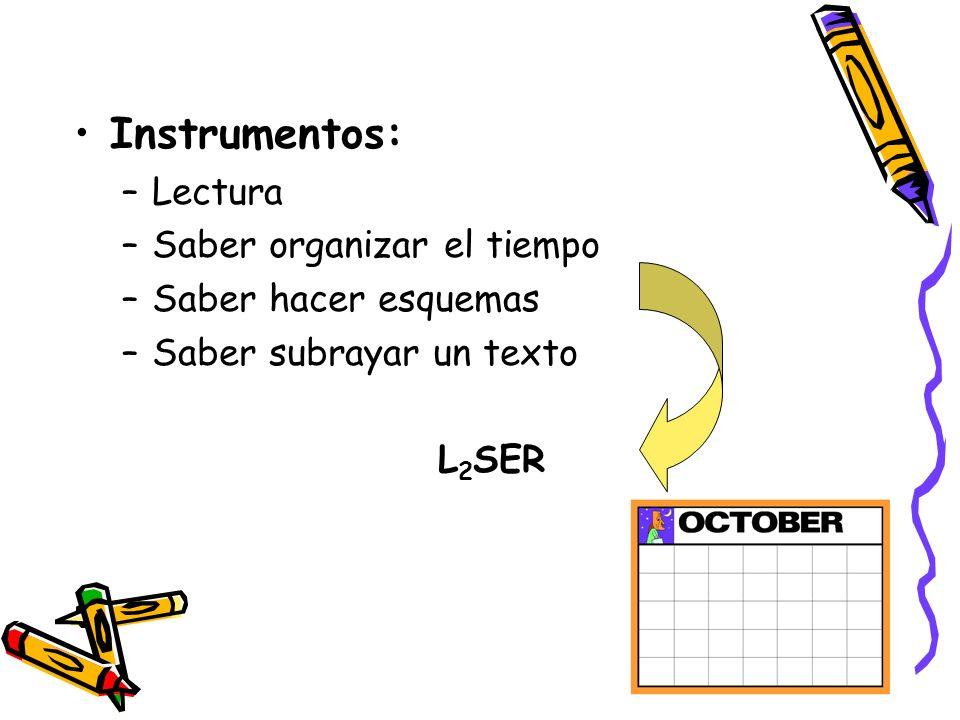 Instrumentos: Lectura Saber organizar el tiempo Saber hacer esquemas