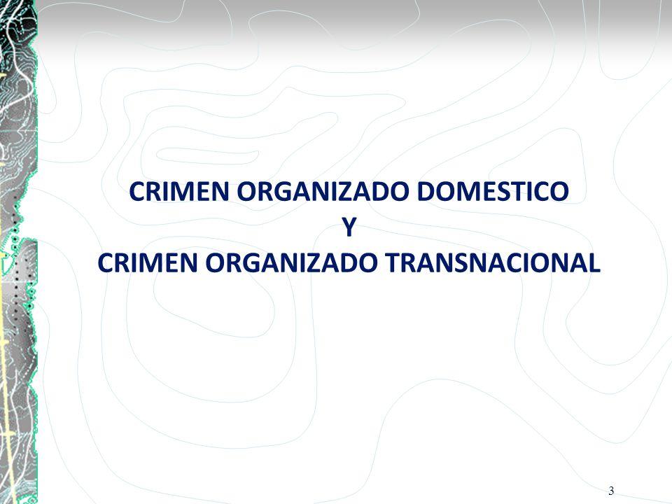CRIMEN ORGANIZADO DOMESTICO Y CRIMEN ORGANIZADO TRANSNACIONAL