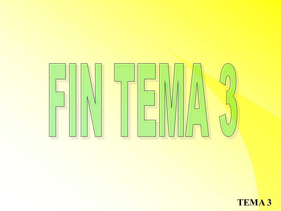 FIN TEMA 3