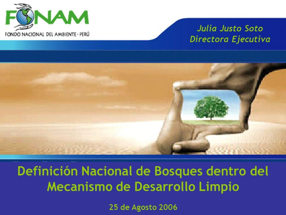 Definición Nacional de Bosques dentro del