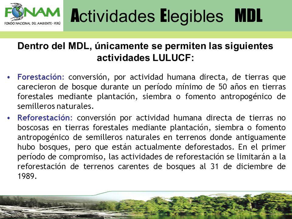 Actividades Elegibles MDL