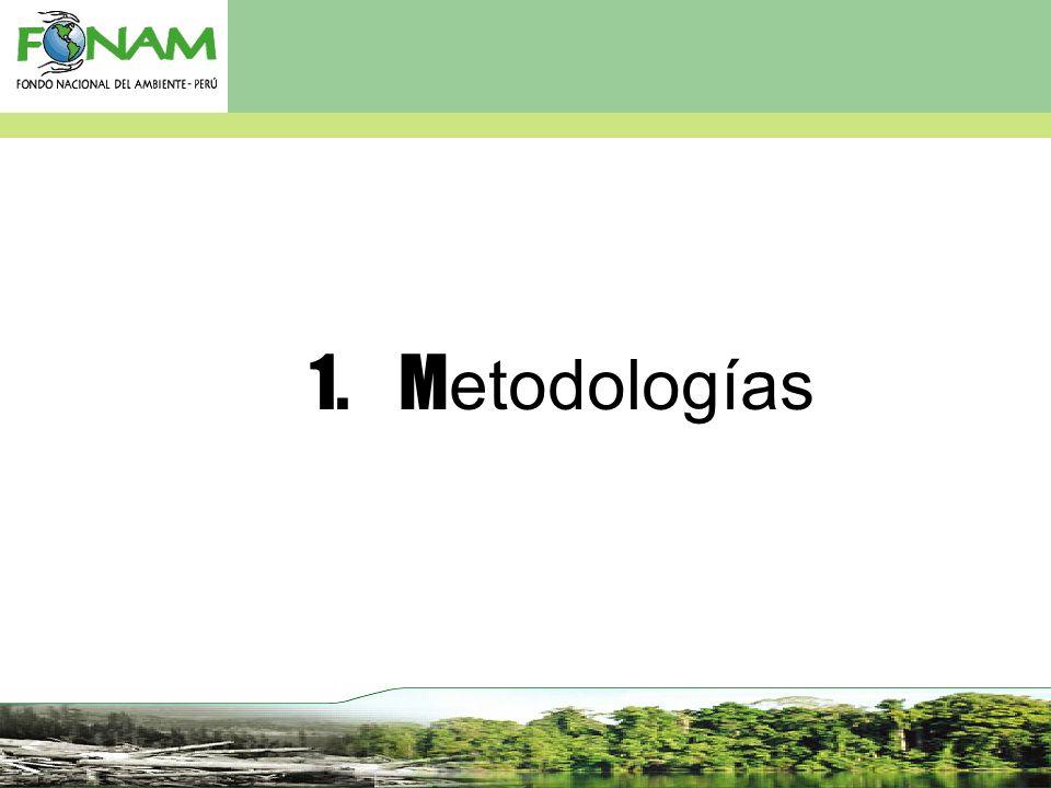 1. Metodologías