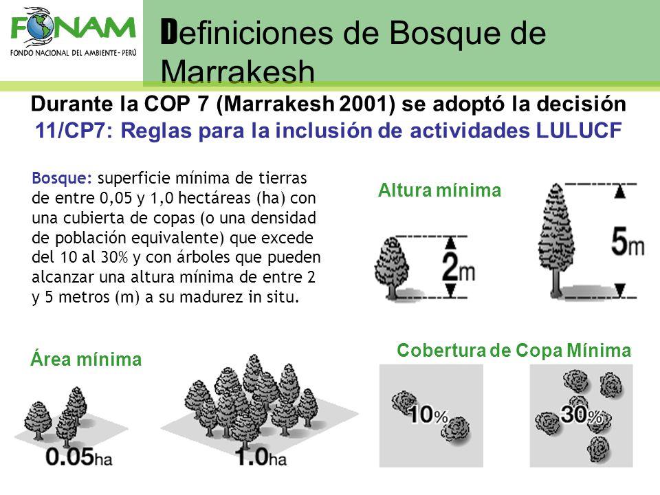 Definiciones de Bosque de Marrakesh