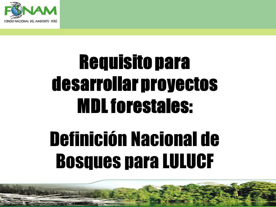 Requisito para desarrollar proyectos MDL forestales:
