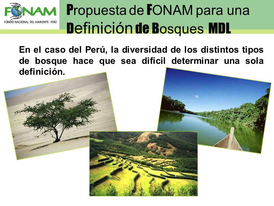 Propuesta de FONAM para una Definición de Bosques MDL