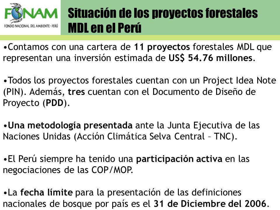 Situación de los proyectos forestales MDL en el Perú