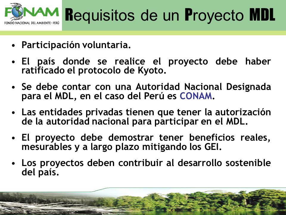 Requisitos de un Proyecto MDL