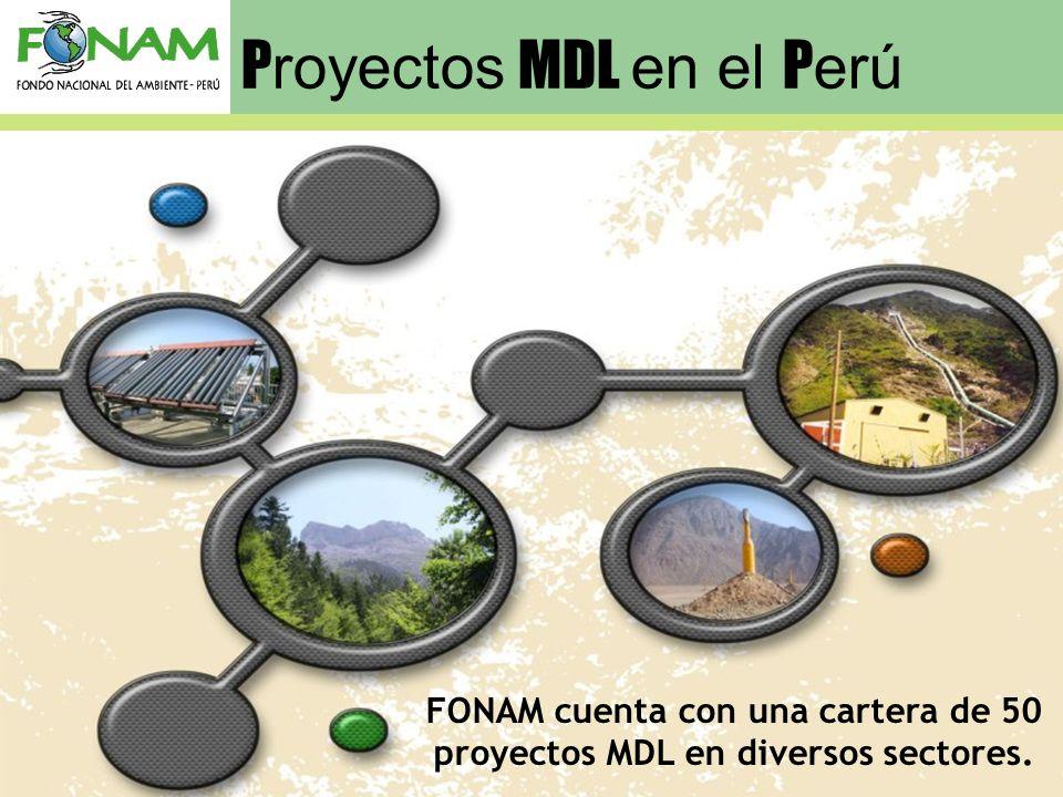 FONAM cuenta con una cartera de 50 proyectos MDL en diversos sectores.