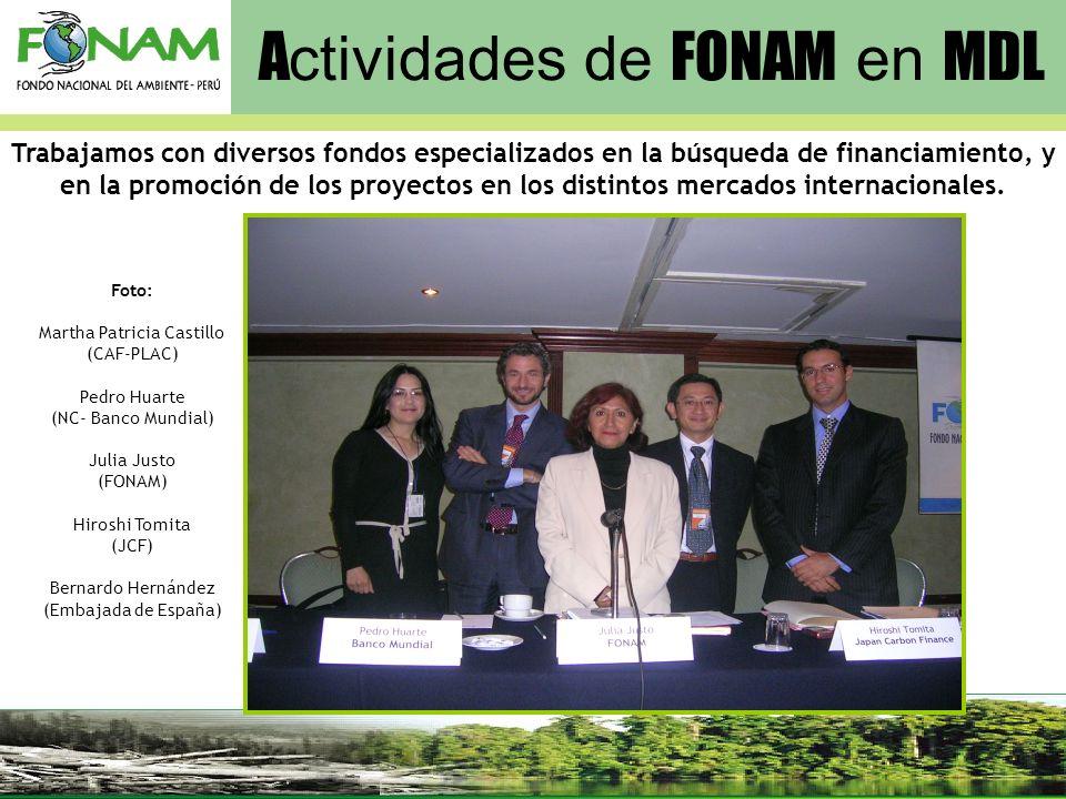 Actividades de FONAM en MDL
