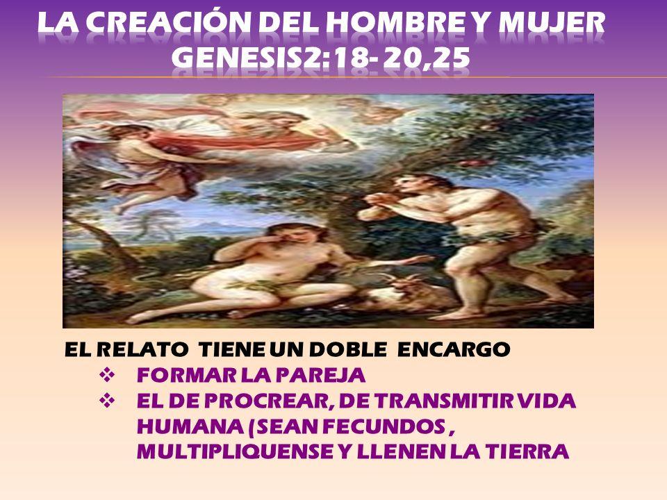 LA CREACIÓN DEL HOMBRE Y MUJER GENESIS2:18- 20,25