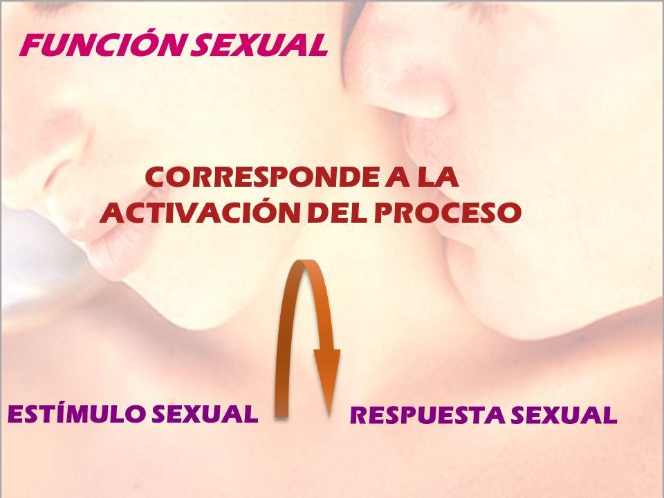FUNCIÓN SEXUAL CORRESPONDE A LA ACTIVACIÓN DEL PROCESO ESTÍMULO SEXUAL