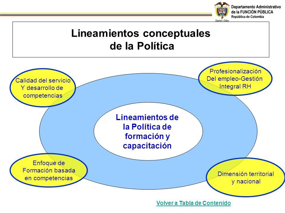 Lineamientos conceptuales de la Política