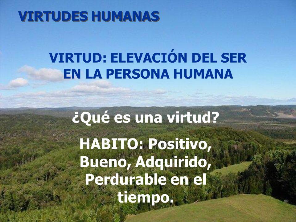 HABITO: Positivo, Bueno, Adquirido, Perdurable en el tiempo.