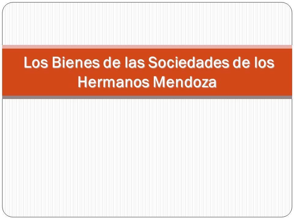 Los Bienes de las Sociedades de los Hermanos Mendoza