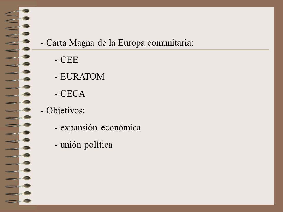 Carta Magna de la Europa comunitaria: