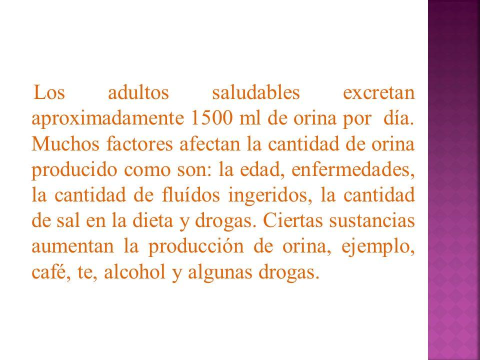 Los adultos saludables excretan aproximadamente 1500 ml de orina por día.