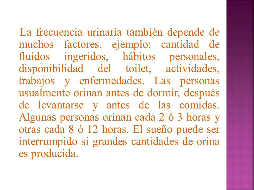 La frecuencia urinaria también depende de muchos factores, ejemplo: cantidad de fluídos ingeridos, hábitos personales, disponibilidad del toilet, actividades, trabajos y enfermedades.