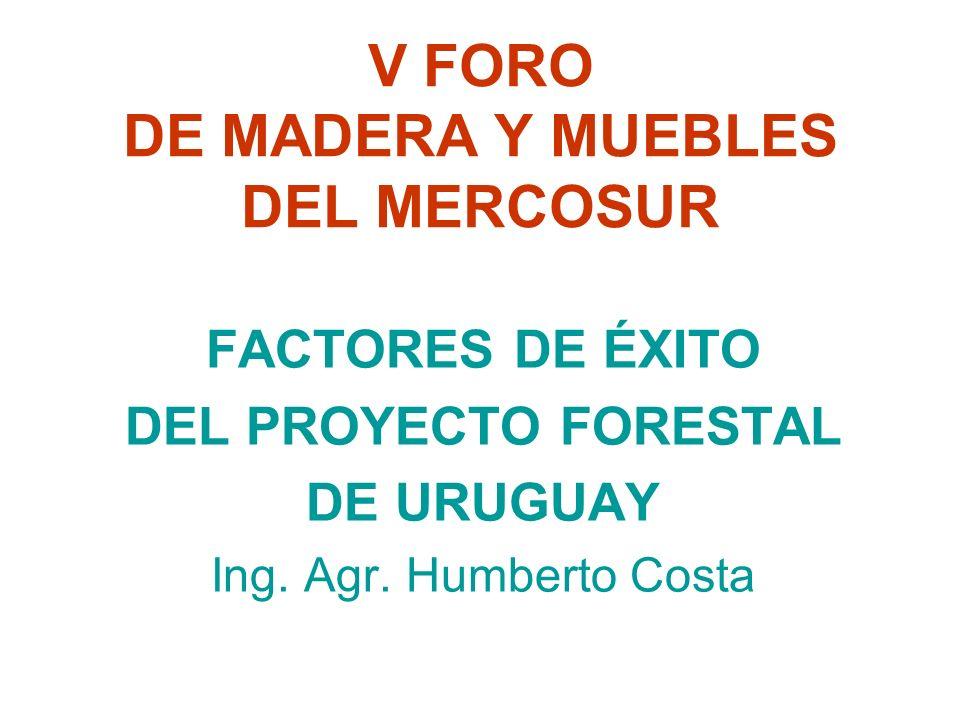V FORO DE MADERA Y MUEBLES DEL MERCOSUR