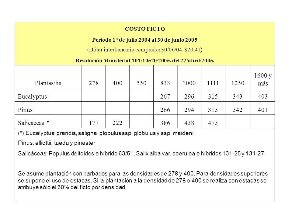 Plantas/ha 278 400 550 833 1000 1111 1250 1600 y más Eucalyptus 267