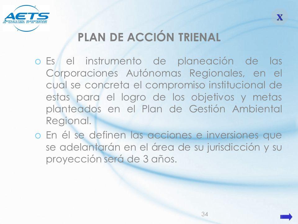 X PLAN DE ACCIÓN TRIENAL.
