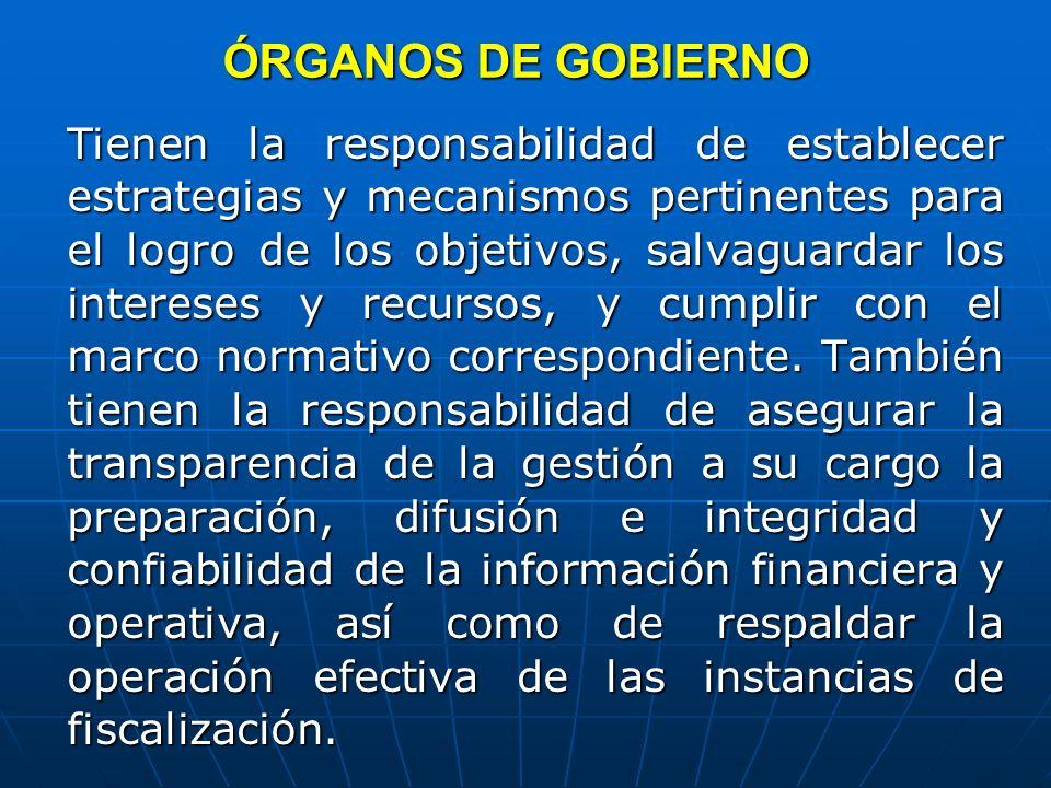 ÓRGANOS DE GOBIERNO