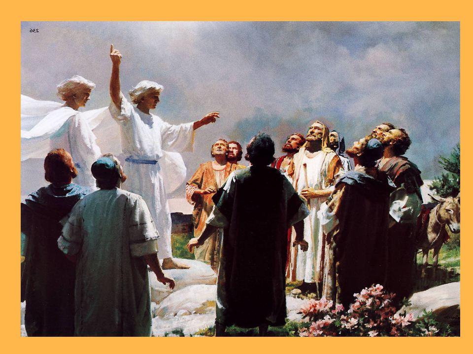 Por último, estando a la mesa los once discípulos, se les apareció y les echó en cara su incredulidad y su dureza de corazón, por no haber creído a quienes le habían visto resucitado.