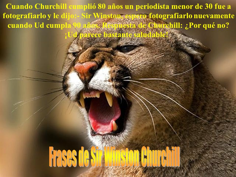 Frases de Sir Winston Churchill
