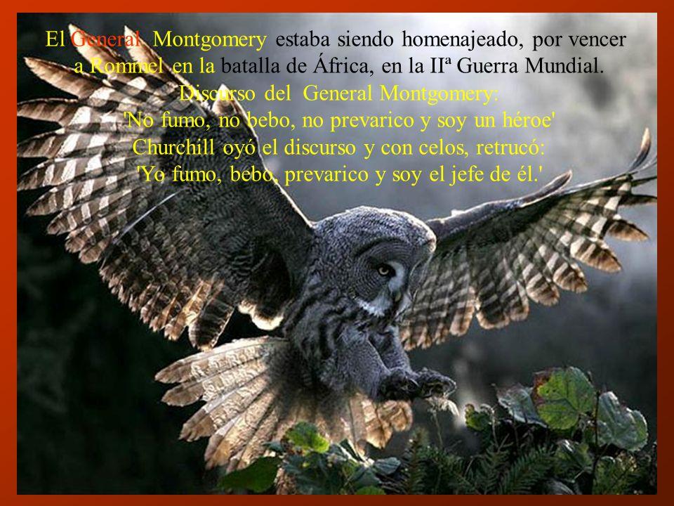 El General Montgomery estaba siendo homenajeado, por vencer
