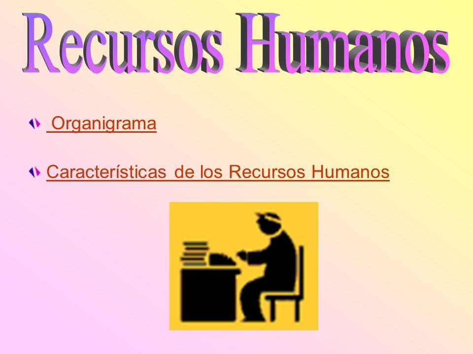 Recursos Humanos Organigrama Características de los Recursos Humanos
